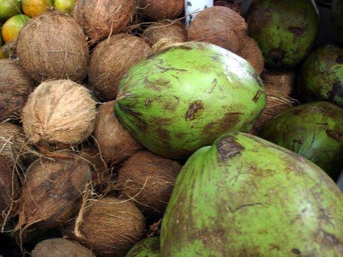 Eliane Zimmermann Aromapraxis - Kokosnüsse Kokoswasser