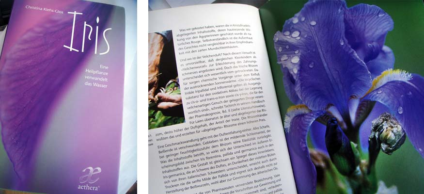 Eliane Zimmermann AiDA Aromatherapy