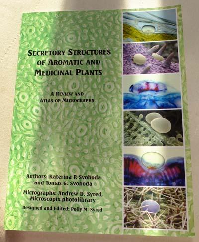 Aromatherapie-Fernstudium bei AiDA Aromatherapy