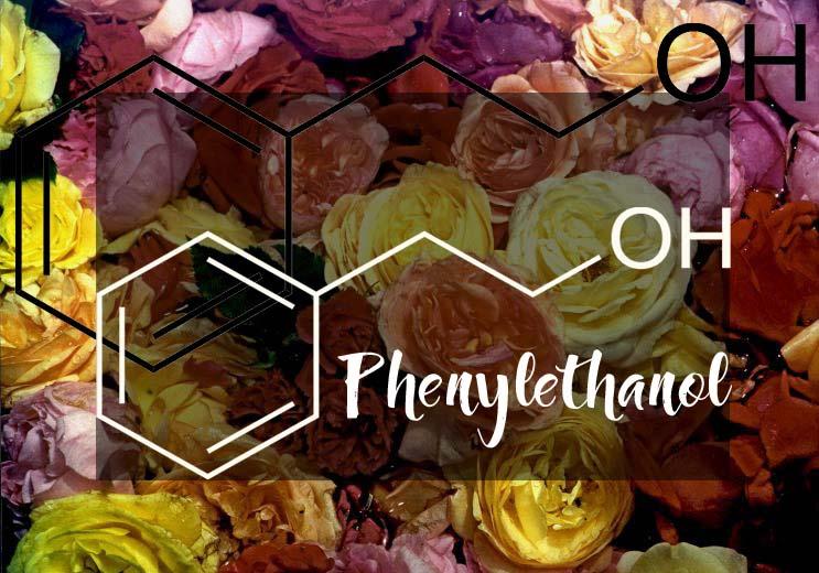 rose_phenylethanol_beschr