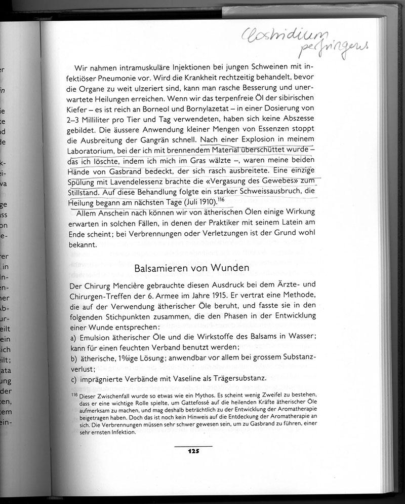 Gattefossé_Buchseite_xs