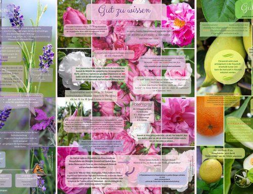 Dufte Plakate zum Freuen und Lernen