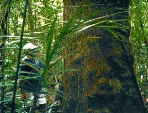 Über uns, die Welt, Artenschutz und Gewinnmaximierung