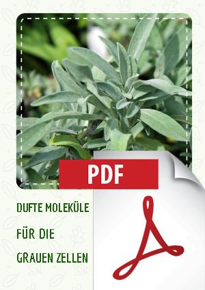Fachartikel Demenz Aromapflege by Eliane Zimmermann 2018