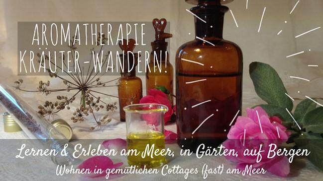 Aromatherapie Eliane Zimmermann, Lernen und Erleben in Südwest Irland