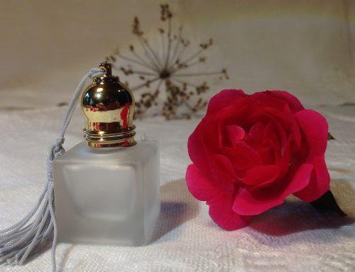 Hochkarätige Fortbildungen aus dem Bereich der klinischen Aromapflege