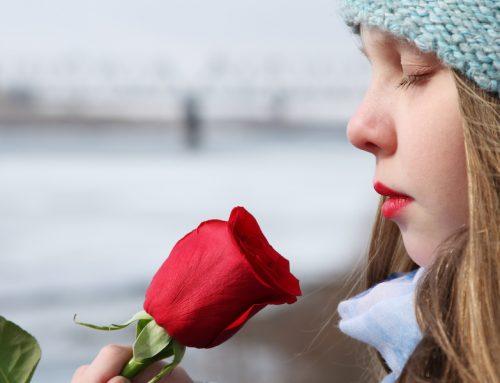 Ätherische Öle beim Lernen: Merken, Abrufen und sicher Wiedergeben
