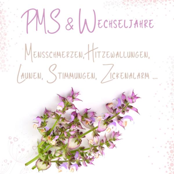 Web-Seminar PMS & Wechseljahre - Aromatherapie Eliane Zimmermann