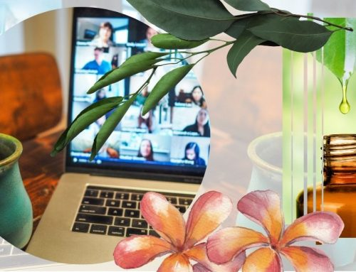 Die fünfte Botanica-Konferenz – internationale Fortbildung