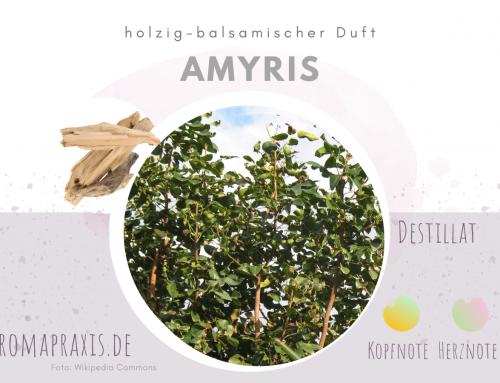 Amyrisholz